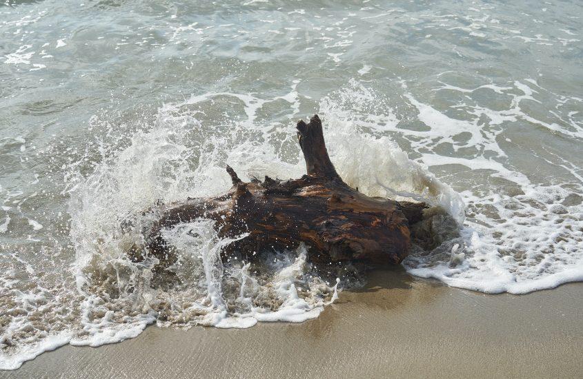 દુનિયાનો અરીસો બહુ કદરૂપો છે! એક લાકડું હોય તો તરી જવાય!